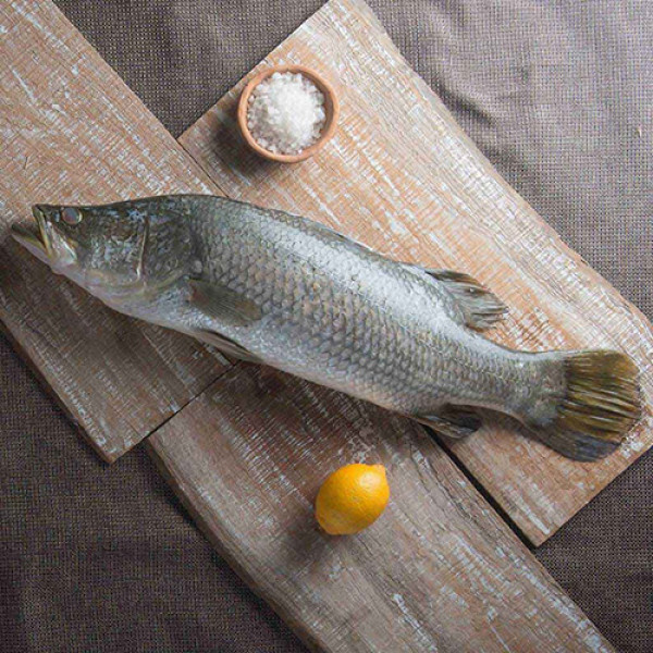 Buy wide range of fish online home delivery fresh for Order fish online